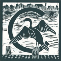 Nancy Crasco, Cormorant, 2015. Linocut. From Charles River Alphabet, printed by Leslie Evans. Purchase, Frances Hovey Howe Print Fund, 2016.