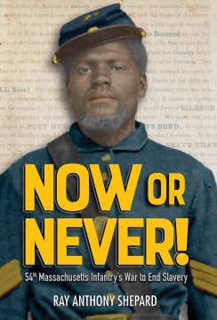 Now or Never! book cover