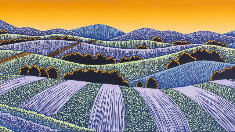 Daryl V. Storrs, Fields Afar, 2010, printed 2014. Linocut. 12 x 18⅞ inches. Purchase, 2014