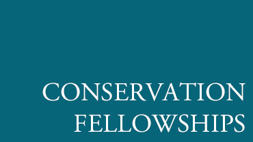 Conservation Fellowships button