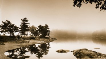Lisa Tyson Ennis, Parker Point, Maine, 2001, printed 2010. Toned silver gelatin print. 19¼ x 16 inches. Purchase, 2010